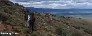 Santa Rosa-Paradise Peak Wilderness