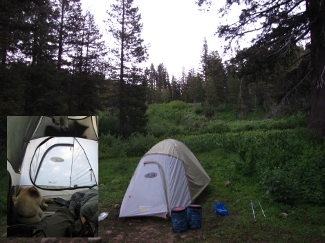 Campsite along no-name creek - most time spent inside of tent...