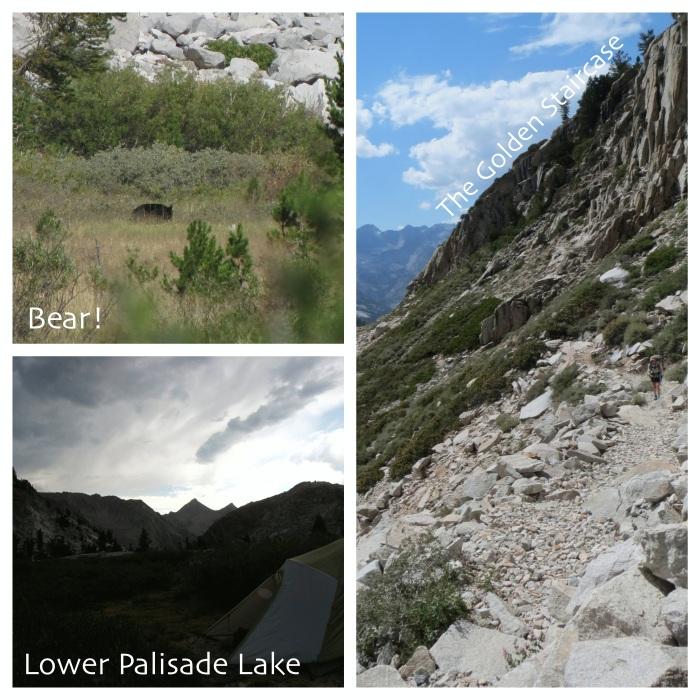 Bear sighting, Golden Staircase, Lower Paradise Lake