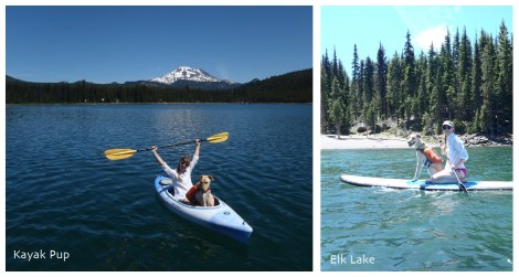 Kayak and SUP on Elk Lake