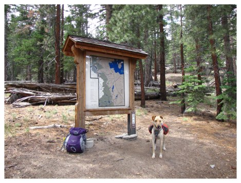 Gibbs Lake Trailhead
