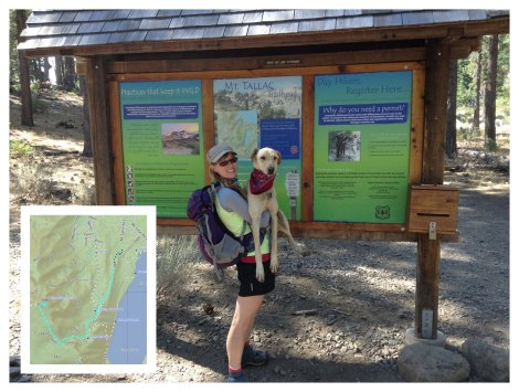 Mount Tallac Trailhead and map