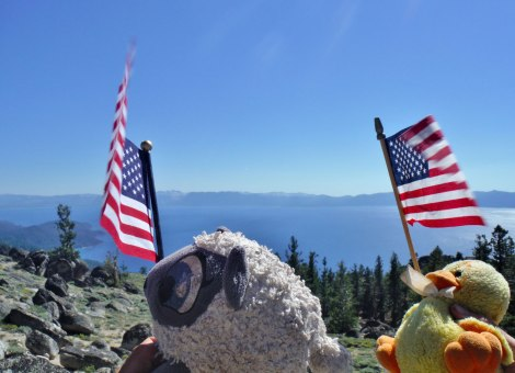 Sheep and Moby getting patriotic on the Tahoe Rim Trail. Photo by Basil or Soils 4
