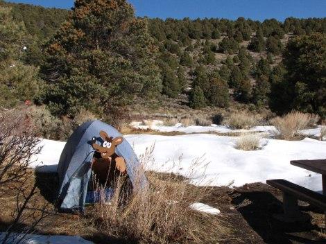 Sven at Great Basin National Park