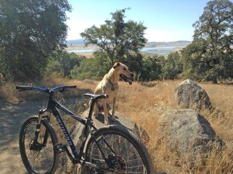 """View of Folsom """"Lake"""""""