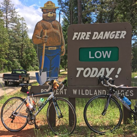 Smokey Bear says keep pedaling!