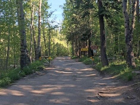 Angora Ridge Road